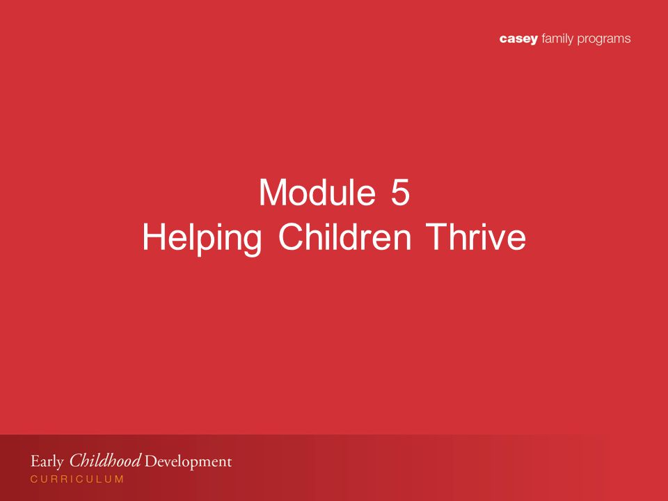 Module 5 Learning Objectives Participants will: Understand importance of stable and nurturing relationships for young children especially when Child Welfare involved.