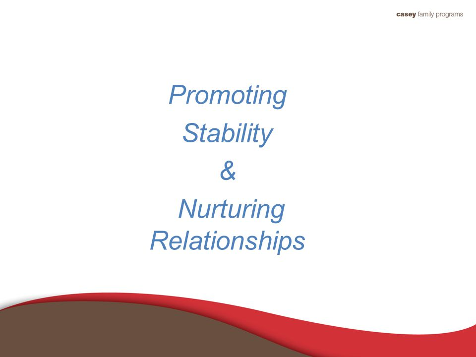 Promoting Stability & Nurturing Relationships