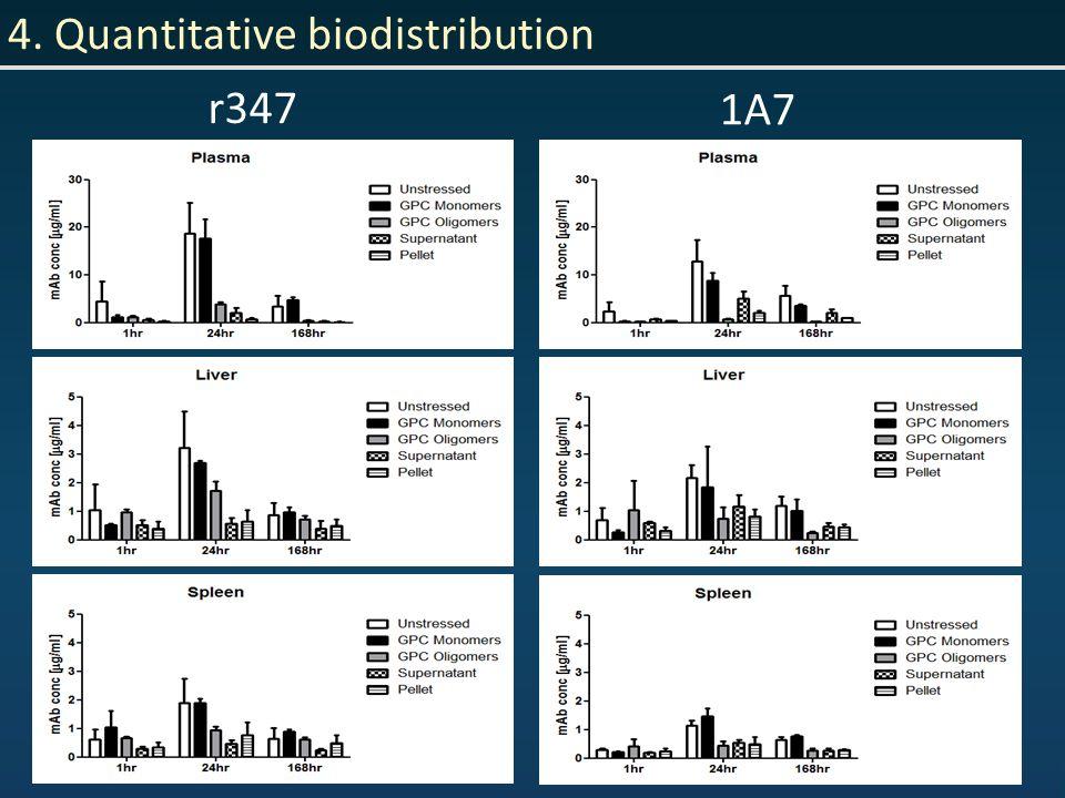 4. Quantitative biodistribution r347 1A7