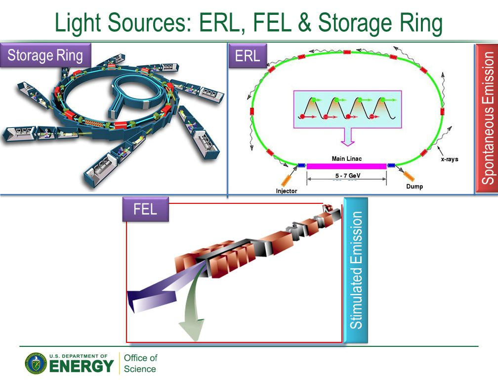 Light Sources: ERL, FEL & Storage Ring approx. 500m Storage Ring ERL FEL Spontaneous Emission Stimulated Emission