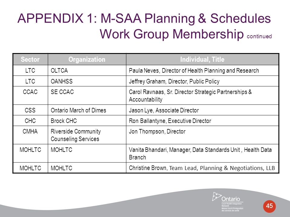 45 APPENDIX 1: M-SAA Planning & Schedules Work Group Membership continued SectorOrganizationIndividual, Title LTCOLTCAPaula Neves, Director of Health