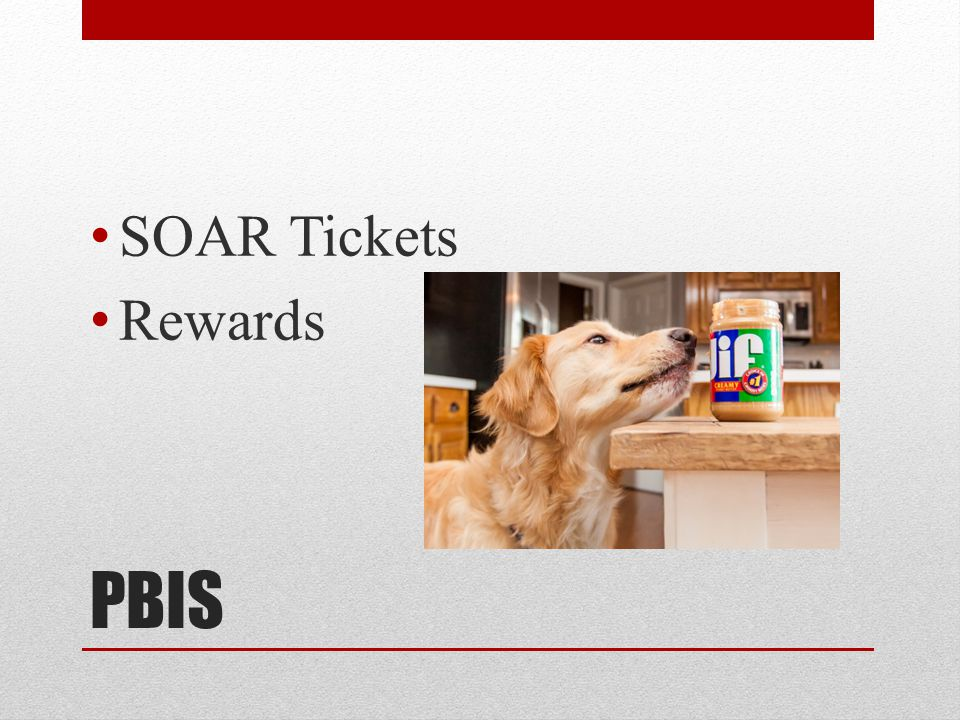 PBIS SOAR Tickets Rewards