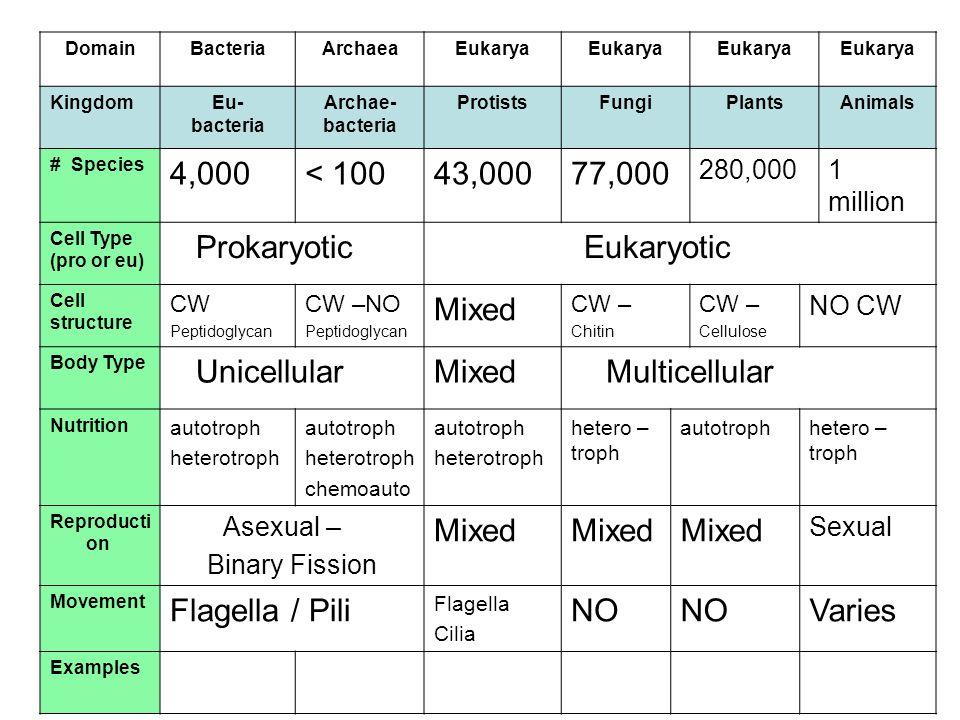 DomainBacteriaArchaeaEukarya KingdomEu- bacteria Archae- bacteria ProtistsFungiPlantsAnimals # Species 4,000< 10043,00077,000 280,0001 million Cell Ty