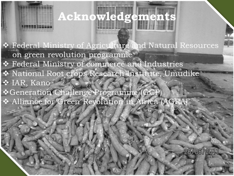 Acknowledgements  Federal Ministry of Agriculture and Natural Resources on green revolution programme  Federal Ministry of commerce and Industries  National Root crops Research Institute, Umudike  IAR, Kano  Generation Challenge Programme (GCP)  Alliance for Green Revolution in Africa (AGRA)