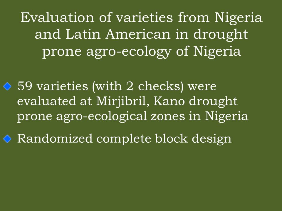 Evaluation of varieties from Nigeria and Latin American in drought prone agro-ecology of Nigeria 59 varieties (with 2 checks) were evaluated at Mirjibril, Kano drought prone agro-ecological zones in Nigeria Randomized complete block design