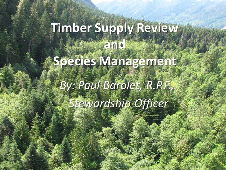 Timber Supply Review and Species Management By: Paul Barolet, R.P.F., Stewardship Officer Stewardship Officer