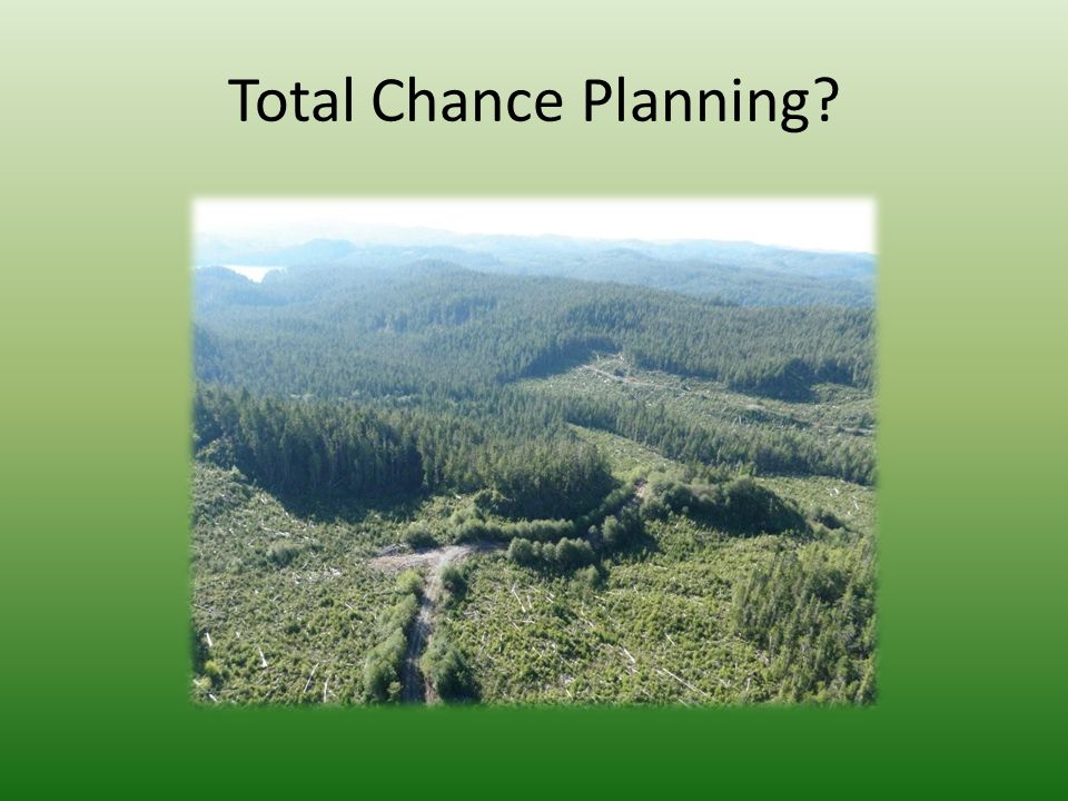 Total Chance Planning