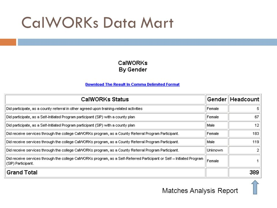CalWORKs Data Mart Matches Analysis Report