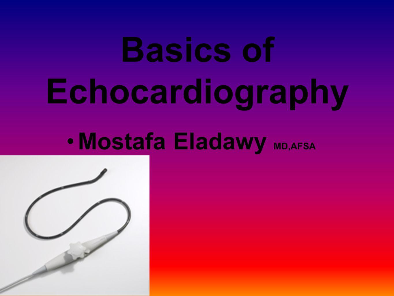 Mostafa Eladawy MD,AFSA Basics of Echocardiography