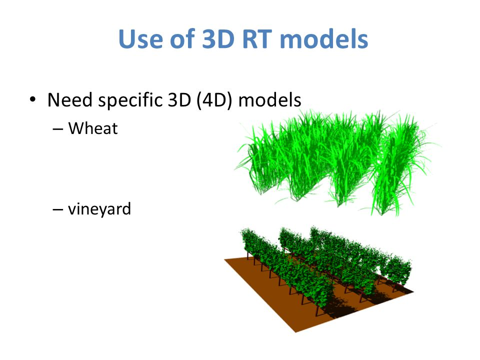 Use of 3D RT models Need specific 3D (4D) models – Wheat – vineyard