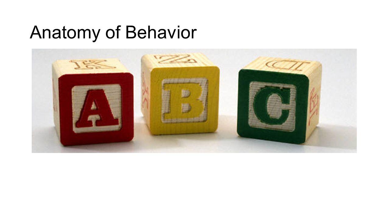 Anatomy of Behavior