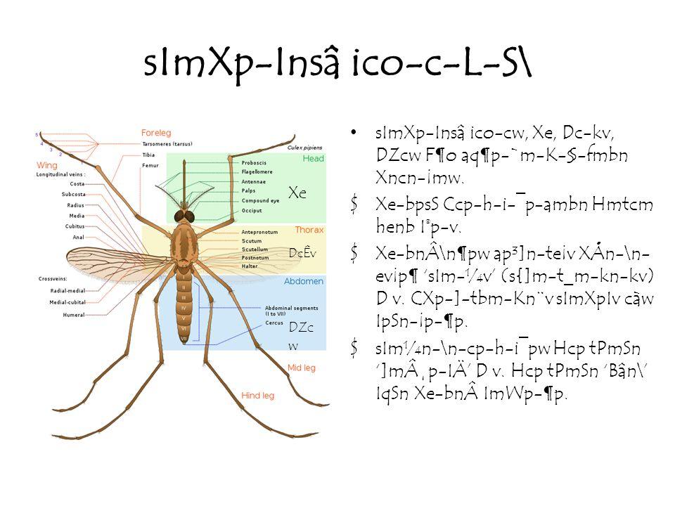 sImXp-Insâ ico-c-L-S\ sImXp-Insâ ico-cw, Xe, Dc-kv, DZcw F¶o aq¶p-`m-K-§-fmbn Xncn-¡mw.