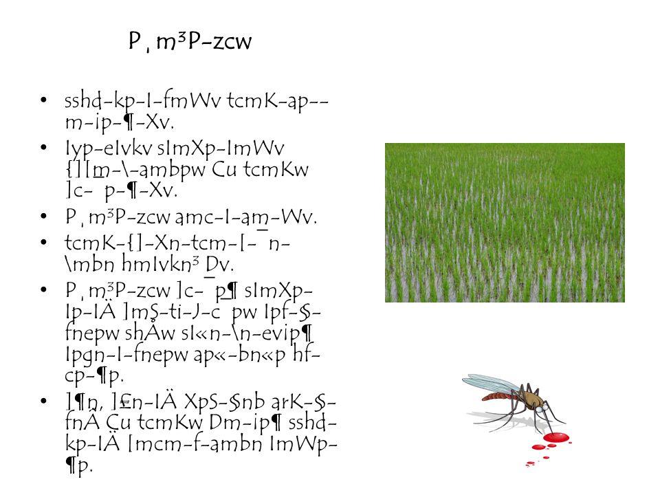 P¸m³P-zcw sshd-kp-I-fmWv tcmK-ap- m-¡p-¶-Xv. Iyp-eIvkv sImXp-ImWv {][m-\-ambpw Cu tcmKw ]c-¯p-¶-Xv. P¸m³P-zcw amc-I-am-Wv. tcmK-{]-Xn-tcm-[-¯n- \mbn