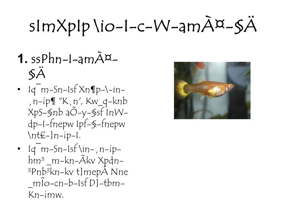 sImXpIp \io-I-c-W-amÀ¤-§Ä 1.
