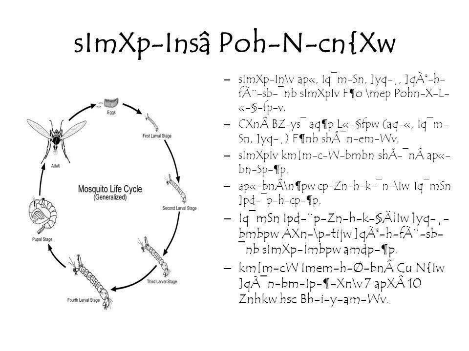 sImXp-Insâ Poh-N-cn{Xw –sImXp-In\v ap«, Iq¯m-Sn, ]yq-¸, ]qÀ®-h- fÀ¨-sb-¯nb sImXpIv F¶o \mep Pohn-X-L- «-§-fp-v.