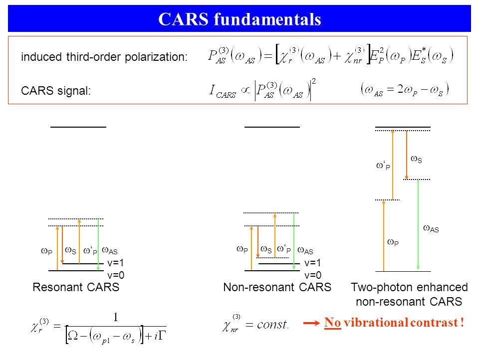 CARS fundamentals Resonant CARS  AS PP SS v=1 v=0 'P'P CARS signal: induced third-order polarization: No vibrational contrast ! Two-photon enha
