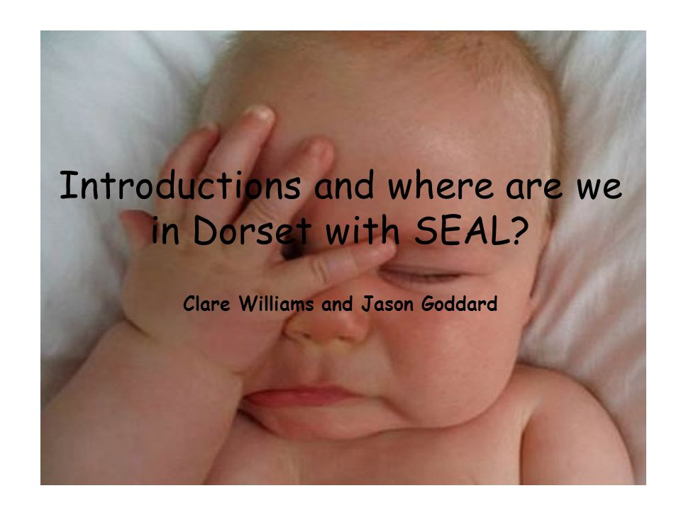 How does SEAL support learning.