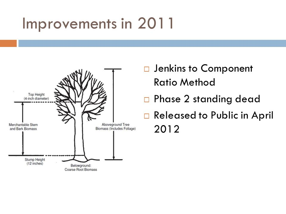 Improvements in 2012  Phase 3 Down Woody Materials  Released to Public in April 2013