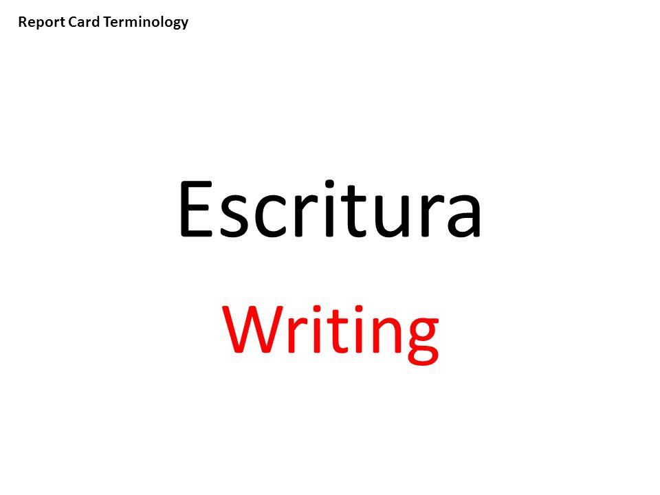 Report Card Terminology Escritura Writing