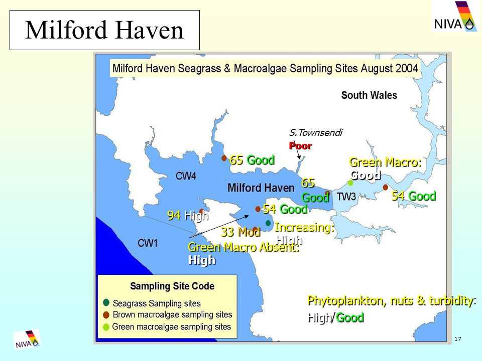 17 Milford Haven 94 High 33 Mod 54 Good Increasing:High 65 Good 54 Good Green Macro: Good S.TownsendiPoor Green Macro Absent: High Phytoplankton, nuts & turbidity: High/Good