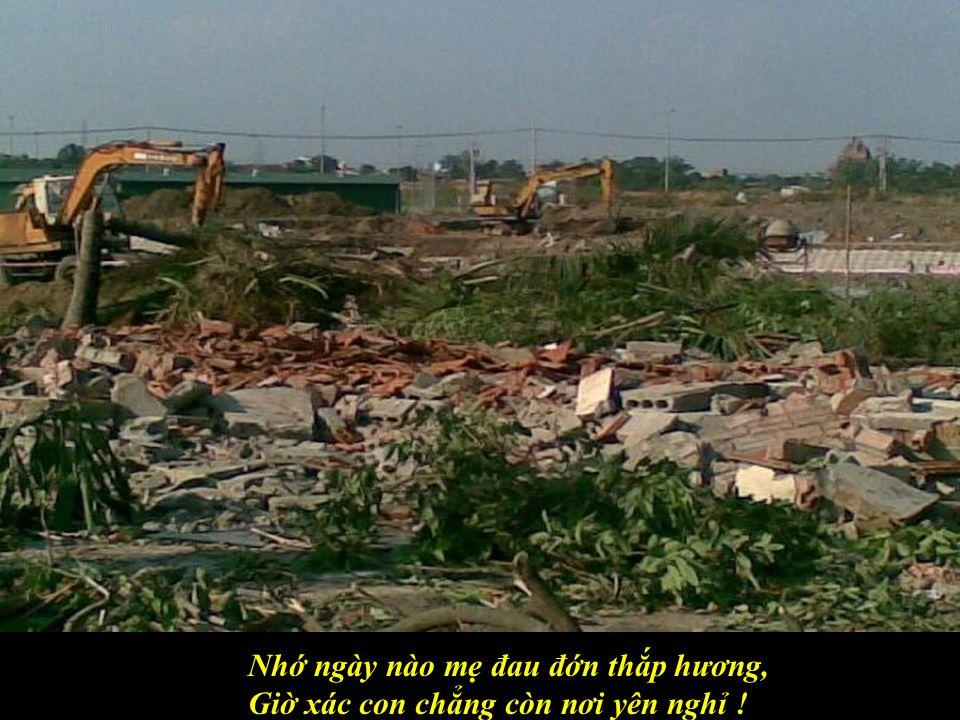 Tượng Thương Tiếc bị đập đổ bên đường, Tôi vẫn thấy bên kia bờ đại dương…