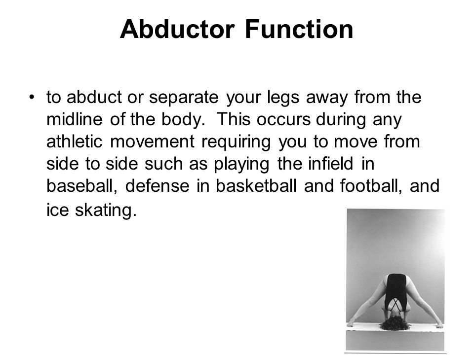 Abductor Function to abduct or separate your legs away from the midline of the body.