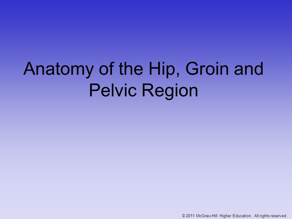 Anatomy of the Hip, Groin and Pelvic Region © 2011 McGraw-Hill Higher Education. All rights reserved.