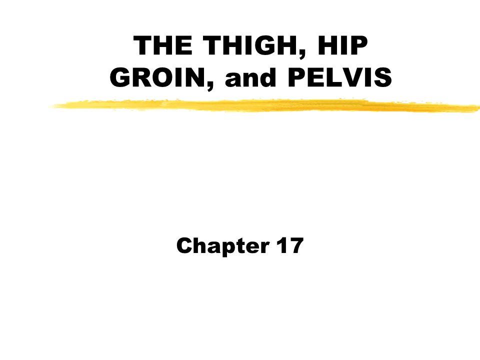 INTRODUCTION zAlthough the thigh, hip, groin and pelvis area have a relatively low incidence of injury compared to some of the other body areas we have studied, there are some serious problems which can occur in this area, as well as some common problems such as the hamstring and groin strains.