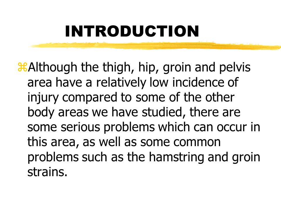 Anatomy of the Thigh zThe Femur zMuscles yAnterior Thigh Muscles yPosterior Thigh Muscles zNerve Supply zBlood Supply zFascia zFunctional Anatomy
