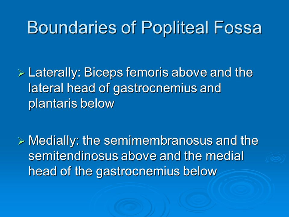 Boundaries of Popliteal Fossa  Laterally: Biceps femoris above and the lateral head of gastrocnemius and plantaris below  Medially: the semimembrano