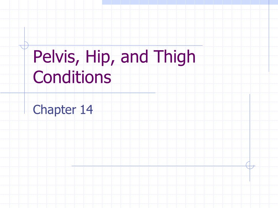 Pelvis Sacrum Coccyx Innominate bone Ilium Ischium Pubis Collectively protect the inner organs, bear weight, site of muscular attachments.