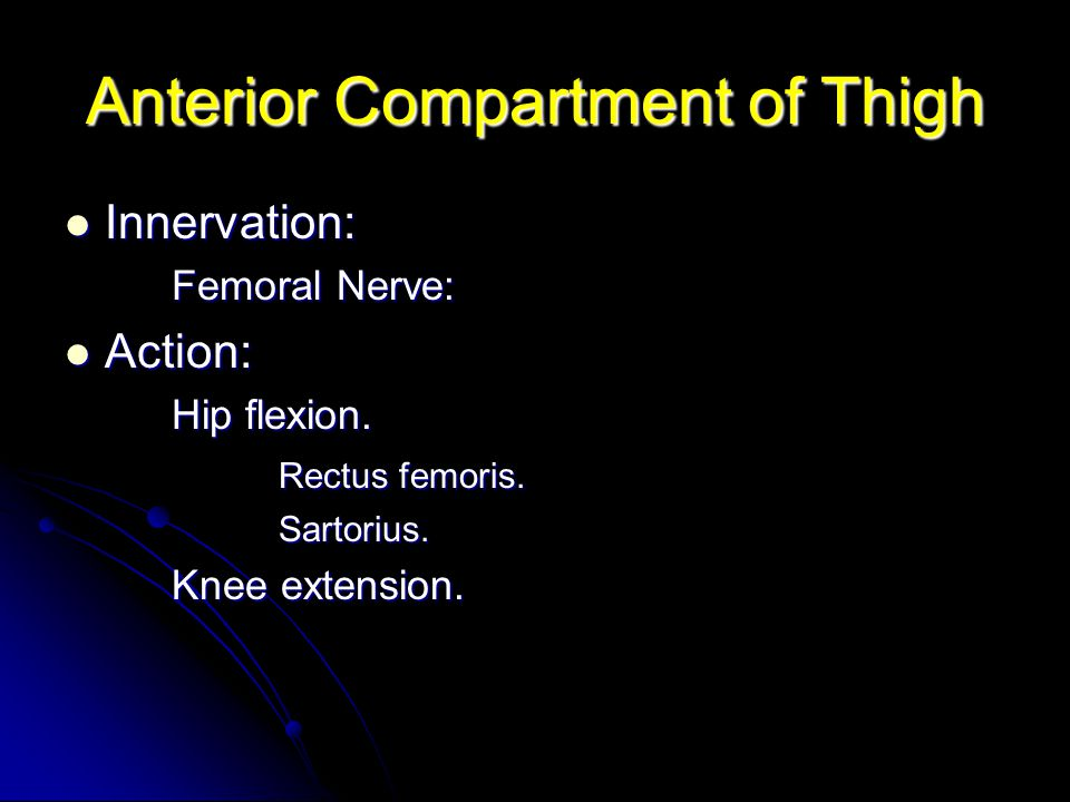 Anterior Compartment of Thigh Innervation: Innervation: Femoral Nerve: Action: Action: Hip flexion. Rectus femoris. Sartorius. Knee extension.