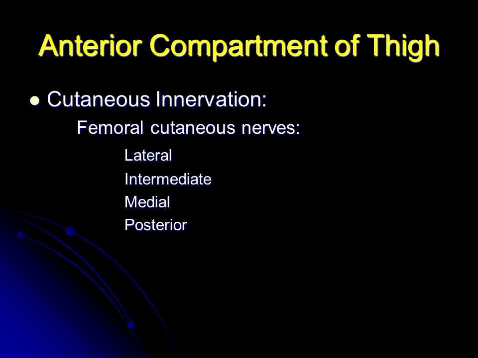 Anterior Compartment of Thigh Cutaneous Innervation: Cutaneous Innervation: Femoral cutaneous nerves: LateralIntermediateMedialPosterior