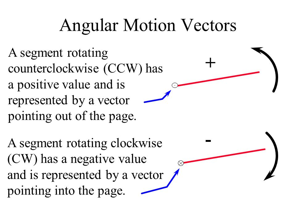 Angular Motion Vectors A segment rotating counterclockwise (CCW) has a positive value and is represented by a vector pointing out of the page.