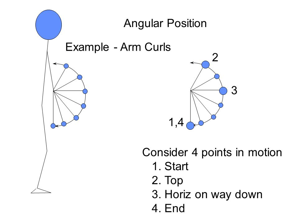 Angular Position Example - Arm Curls Consider 4 points in motion 1.