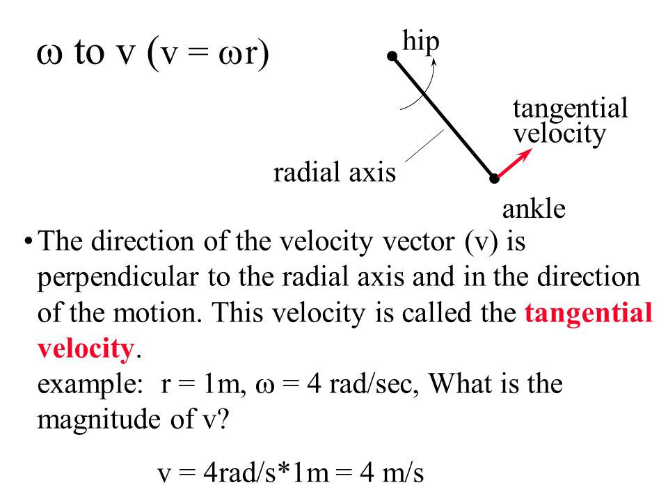 The direction of the velocity vector (v) is perpendicular to the radial axis and in the direction of the motion.