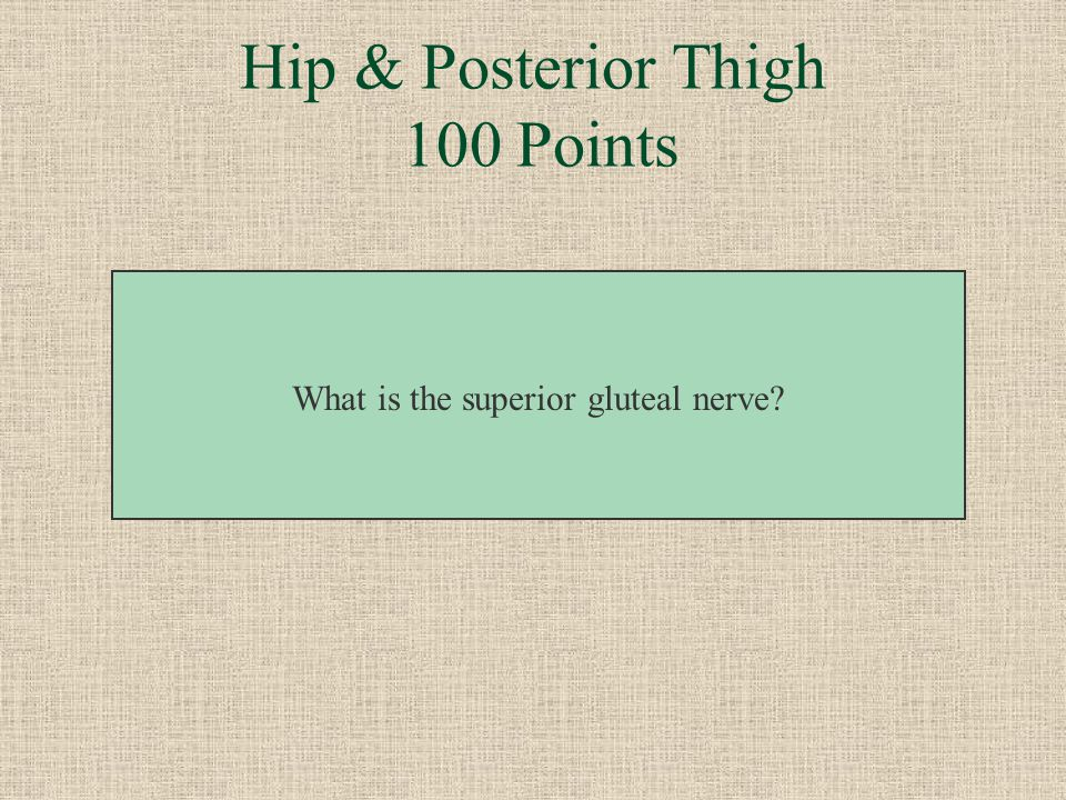 This nerve innervates abductors and medial rotators. Hip & Posterior Thigh 100 Points