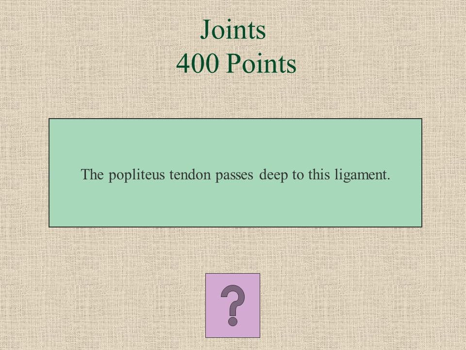 Joints 300 Points What is the deltoid ligament