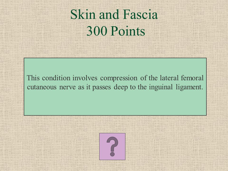 What is the posterior femoral cutaneous nerve Skin and Fascia 200 Points