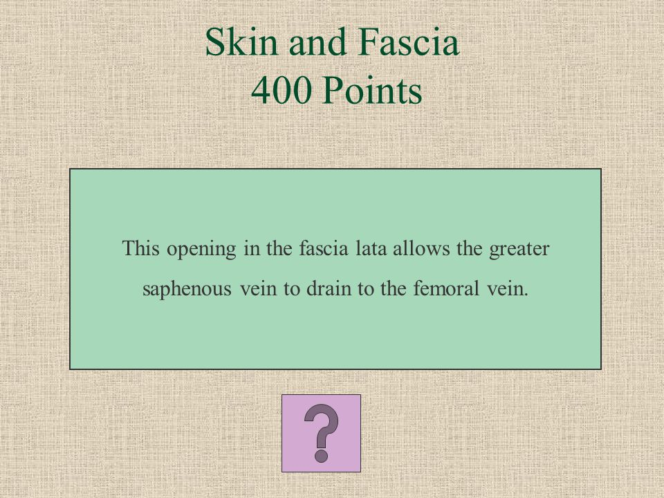 Skin and Fascia 300 Points What is meralgia paresthetica