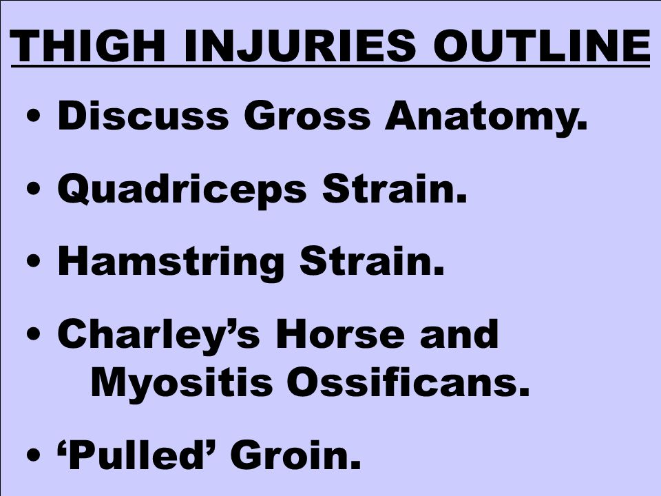 THIGH INJURIES OUTLINE Discuss Gross Anatomy. Quadriceps Strain. Hamstring Strain. Charley's Horse and Myositis Ossificans. 'Pulled' Groin.