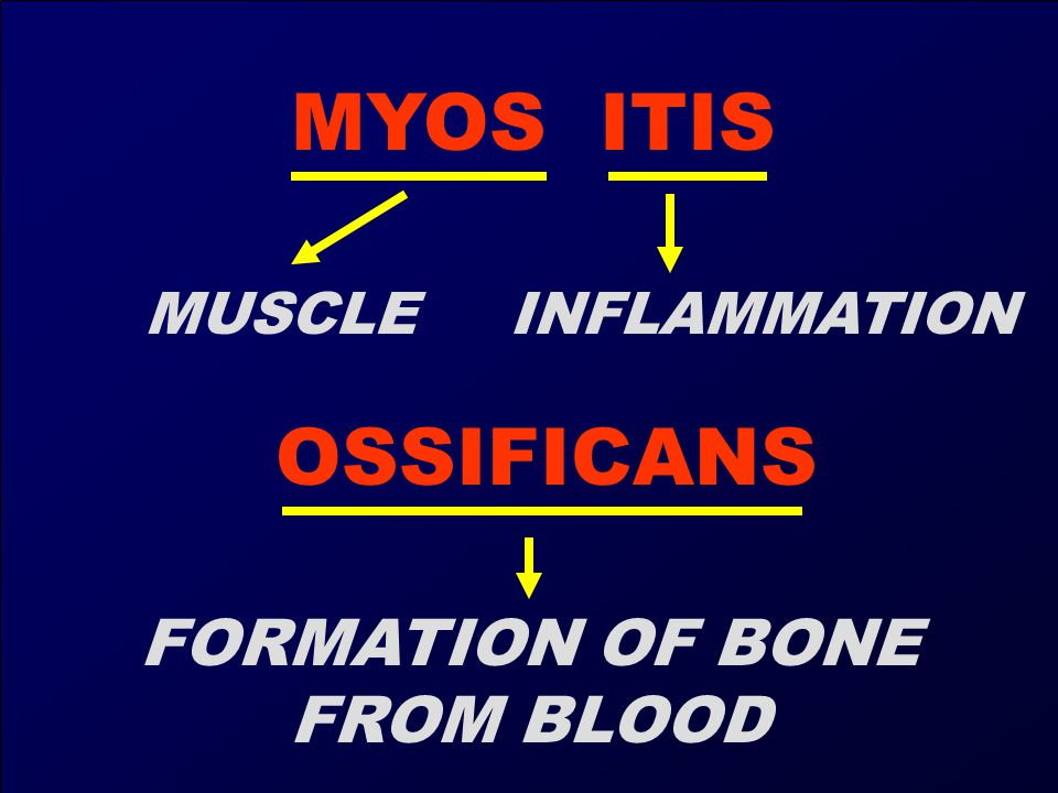 MYOS ITIS MUSCLE INFLAMMATION OSSIFICANS FORMATION OF BONE FROM BLOOD