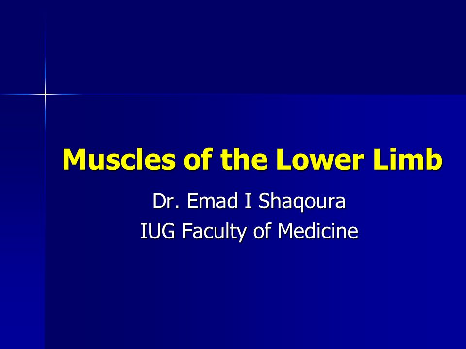 Muscles of the Lower Limb Dr. Emad I Shaqoura IUG Faculty of Medicine