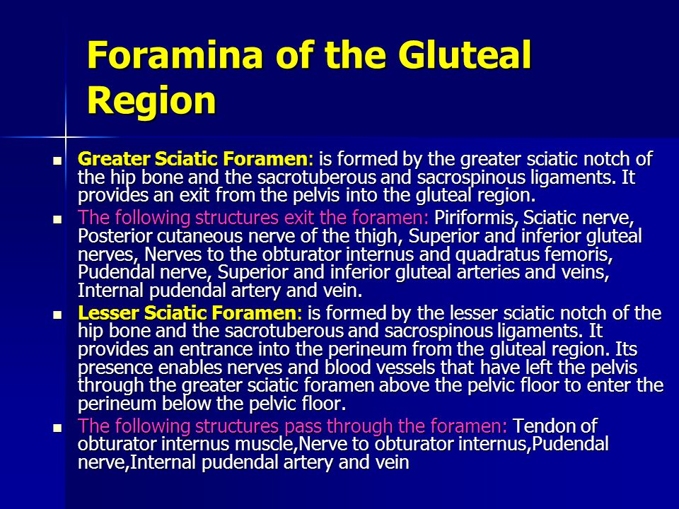 Foramina of the Gluteal Region Greater Sciatic Foramen: is formed by the greater sciatic notch of the hip bone and the sacrotuberous and sacrospinous ligaments.