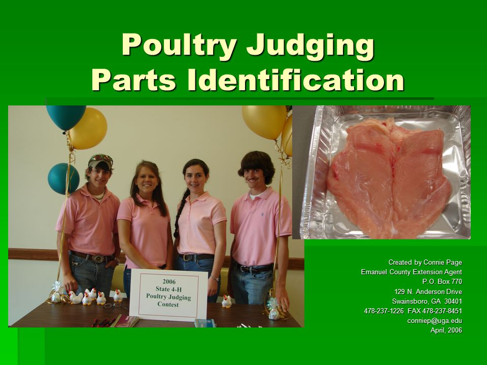 Poultry Judging Parts Identification Created by Connie Page Emanuel County Extension Agent P.O.
