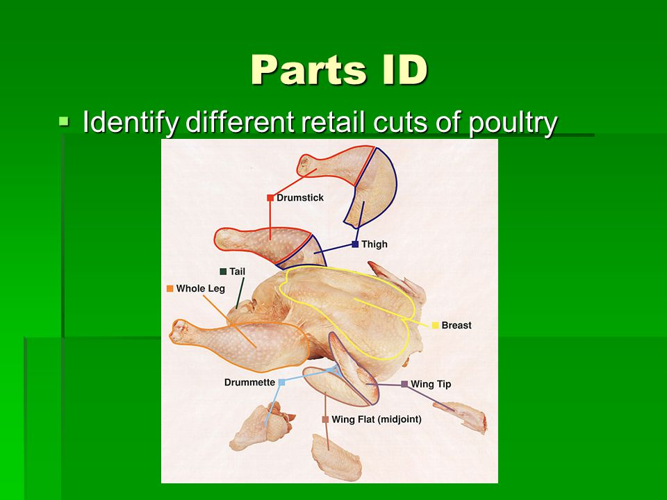 Parts ID – Leg Cuts Leg quarter = thigh and drumstick with a portion of the back attached.
