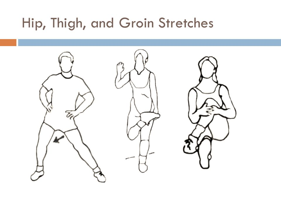 Hip, Thigh, and Groin Stretches