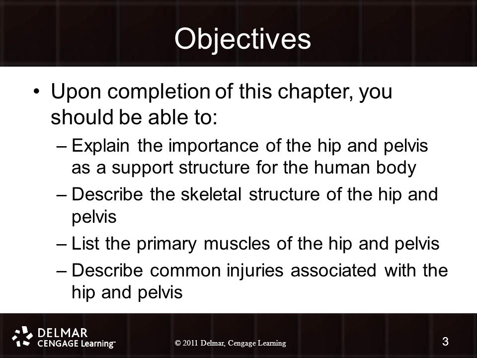 © 2010 Delmar, Cengage Learning 3 © 2011 Delmar, Cengage Learning Objectives Upon completion of this chapter, you should be able to: –Explain the importance of the hip and pelvis as a support structure for the human body –Describe the skeletal structure of the hip and pelvis –List the primary muscles of the hip and pelvis –Describe common injuries associated with the hip and pelvis 3