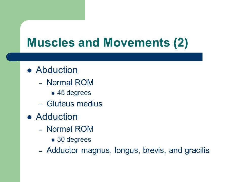 Muscles and Movements (2) Abduction – Normal ROM 45 degrees – Gluteus medius Adduction – Normal ROM 30 degrees – Adductor magnus, longus, brevis, and gracilis