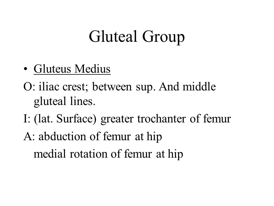 Gluteal Compartment/Posterior Thigh Compartment The gluteal group: ( Gluteas= greek for rump) 1: Gluteus Maximus O: Post. Sacrum & Sup. Gluteal line o
